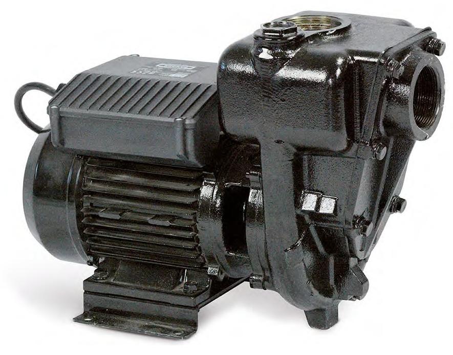 Электрический насос для дизельного топлива PIUSI E 300.